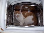 Caramel dans la machine à laver -
